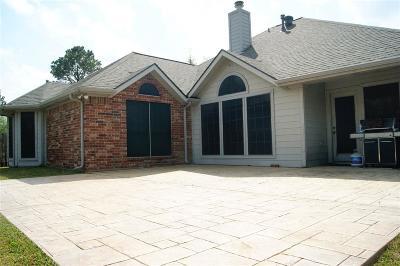 Houston Single Family Home For Sale: 11206 Satin Tail Lane