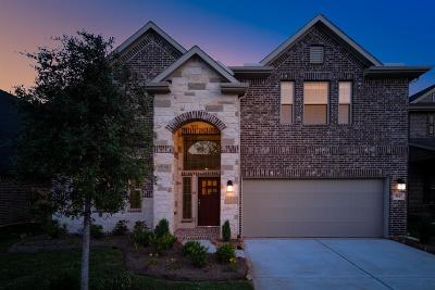 Montgomery Single Family Home For Sale: 324 Capriccio Lane