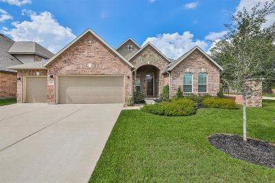 Tomball Single Family Home For Sale: 9502 Three Stone Lane