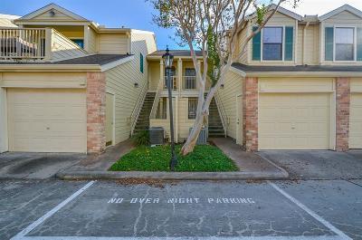 Houston TX Condo/Townhouse For Sale: $215,000