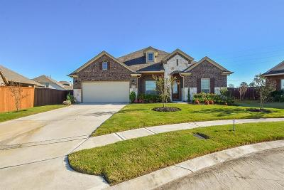 Manvel Single Family Home For Sale: 9719 Humboldt Trail