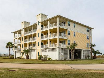 Galveston Condo/Townhouse For Sale: 26350 Cat Tail Drive #201