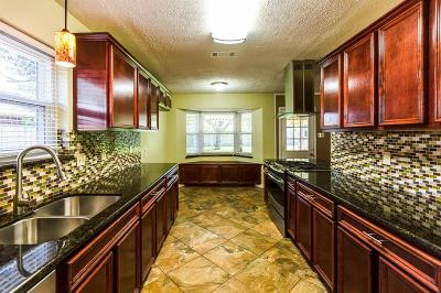 Pearland Single Family Home For Sale: 1920 Lazy Creek Lane