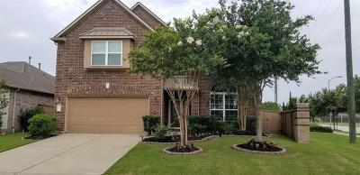 Katy Single Family Home For Sale: 9923 Red Pine Valley Trail