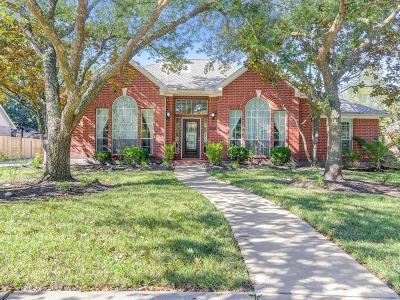 Houston Single Family Home For Sale: 4107 N Pine Brook Way