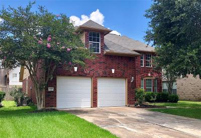 Sugar Land Single Family Home For Sale: 4839 Russett Lane