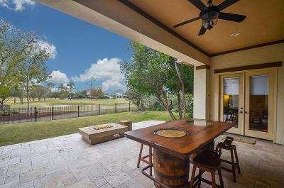 Houston Single Family Home For Sale: 3914 Antibes Lane