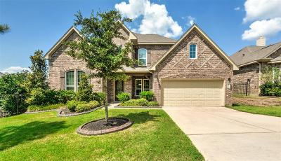 Conroe Single Family Home For Sale: 12457 Pebble View Drive