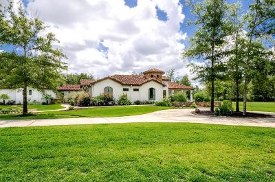 Spring Single Family Home For Sale: 27510 Velvet Sky Way