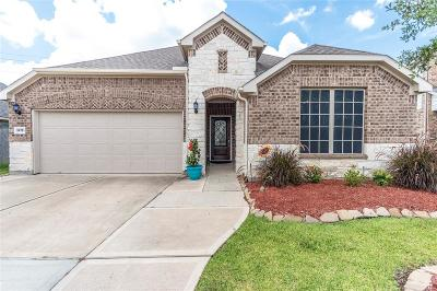 Katy Single Family Home For Sale: 24751 Ballad Drive
