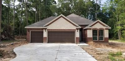 New Caney Single Family Home For Sale: 2542 Fountain View St