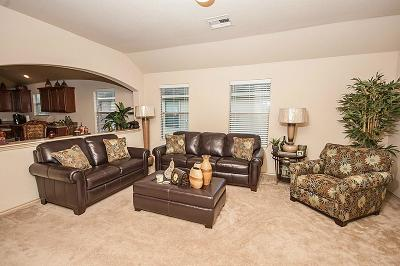 Katy Single Family Home For Sale: 20411 Trent Park Court