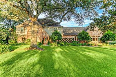 Houston Single Family Home For Sale: 646 Hedwig Road