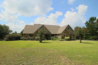 Willis Single Family Home For Sale: 9 Hidden Springs Ranch Drive