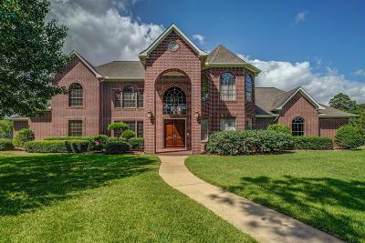 Friendswood Single Family Home For Sale: 1909 San Miguel Drive