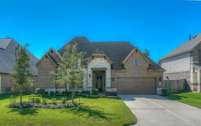 Montgomery Single Family Home For Sale: 124 Lukes Place Court