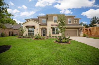 Spring Single Family Home For Sale: 20214 E Hachita Circle