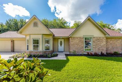 Friendswood Single Family Home For Sale: 803 Sandringham Drive