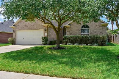 Spring Single Family Home For Sale: 9115 Edgeloch Drive