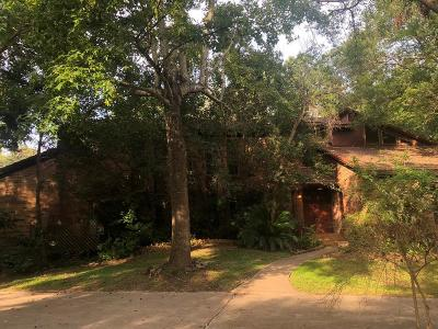 Friendswood Single Family Home For Sale: 2205 Pine Drive
