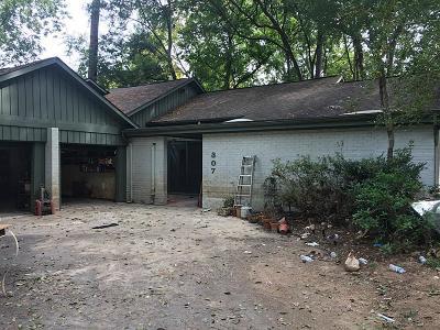 Houston Single Family Home For Sale: 307 Briarpark Drive