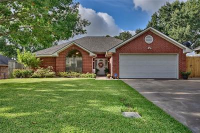 Washington County Single Family Home For Sale: 310 Scenic Drive