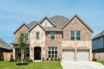 League City Single Family Home For Sale: 1429 Talco Garden Court