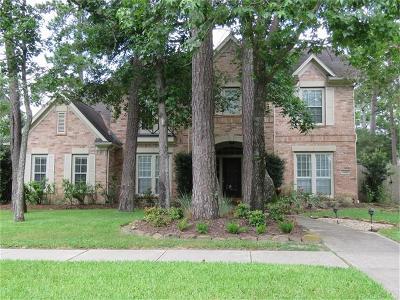 Kingwood Single Family Home For Sale: 6003 Riverchase Village Drive