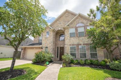 Single Family Home For Sale: 6731 Silver Shade Drive
