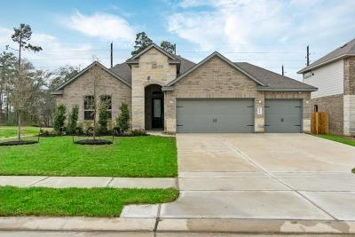 Tomball Single Family Home For Sale: 25615 Pinyon Hill Trail