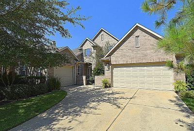 Katy Single Family Home For Sale: 25614 Tower Side Lane