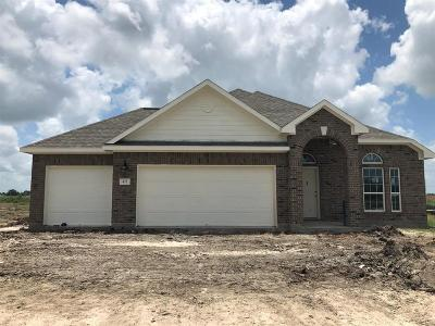 Alvin Single Family Home For Sale: 421 Merlot