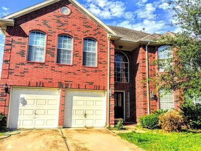 Houston Single Family Home For Sale: 6618 Sunrise Valley Lane