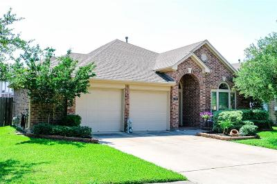League City Single Family Home For Sale: 3206 Rock Brook Falls Lane