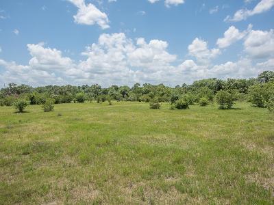 Montgomery Farm & Ranch For Sale: Tbd N Mt Mariah Mount
