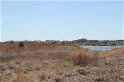 Cat Spring TX Farm & Ranch For Sale: $130,000