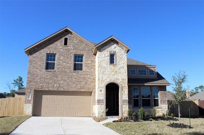 Harris County Single Family Home For Sale: 18015 Nanpu Lane