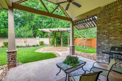 Houston Single Family Home For Sale: 14727 Hampton Green Lane