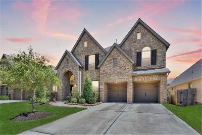 Pearland Single Family Home For Sale: 3207 Seneca Landing Lane