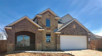 Conroe Single Family Home For Sale: 14004 Silver Falls Court