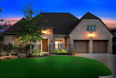 The Woodlands Single Family Home For Sale: 27 Lake Reverie Place