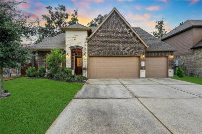 Conroe Single Family Home For Sale: 107 Meadow Valley Drive
