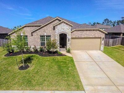 Houston Single Family Home For Sale: 18010 Millau Viaduct Way