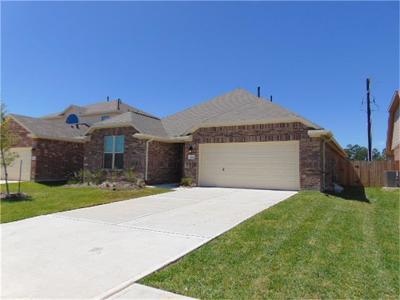 Houston Single Family Home For Sale: 9111 Georgio