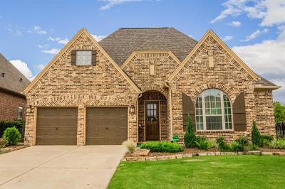 Fulshear Single Family Home For Sale: 38 Sweet Creek Lane
