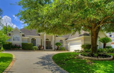 Montgomery Single Family Home For Sale: 161 April Waters Drive N