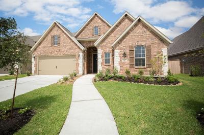 Porter Single Family Home For Sale: 3319 Skylark Valley Lane