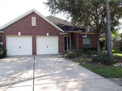 Manvel Single Family Home For Sale: 3222 Summerland Drive