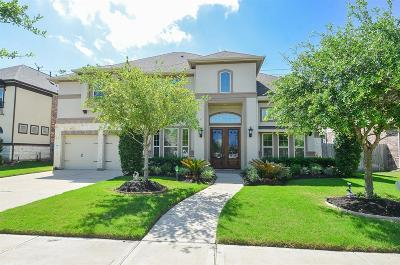 Riverstone Single Family Home For Sale: 5915 White River Pass Lane