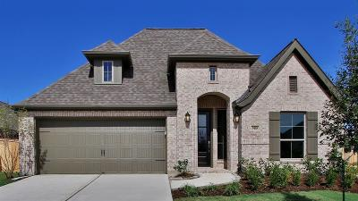 Tomball Single Family Home For Sale: 9418 Mont Ellie Lane